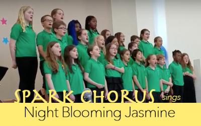 Night Blooming Jasmine with Spark Chorus