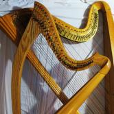 9745-square-2-harps