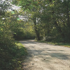 CBB's road photo