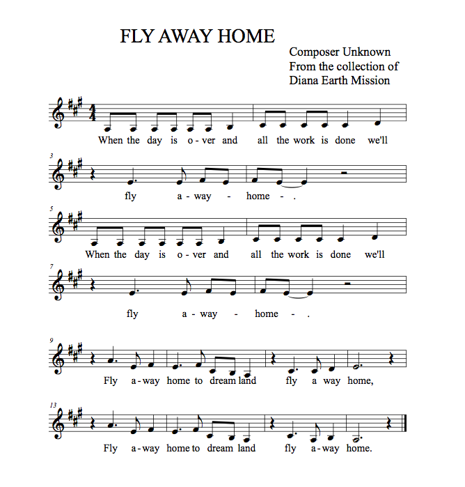 Fly Away Home Pdf